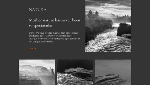 Screenshot from a travel website; Black and white images of nature