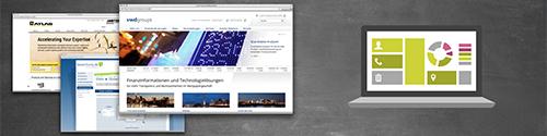 Graphical display: Website screenshots