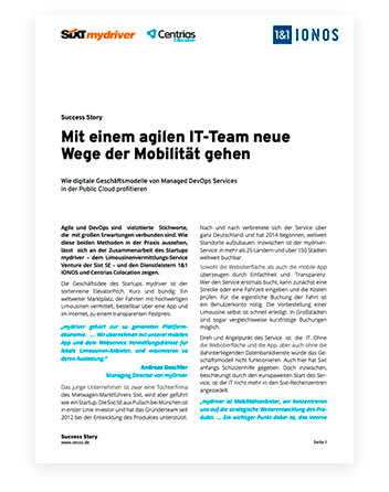 German document about agile IT teams